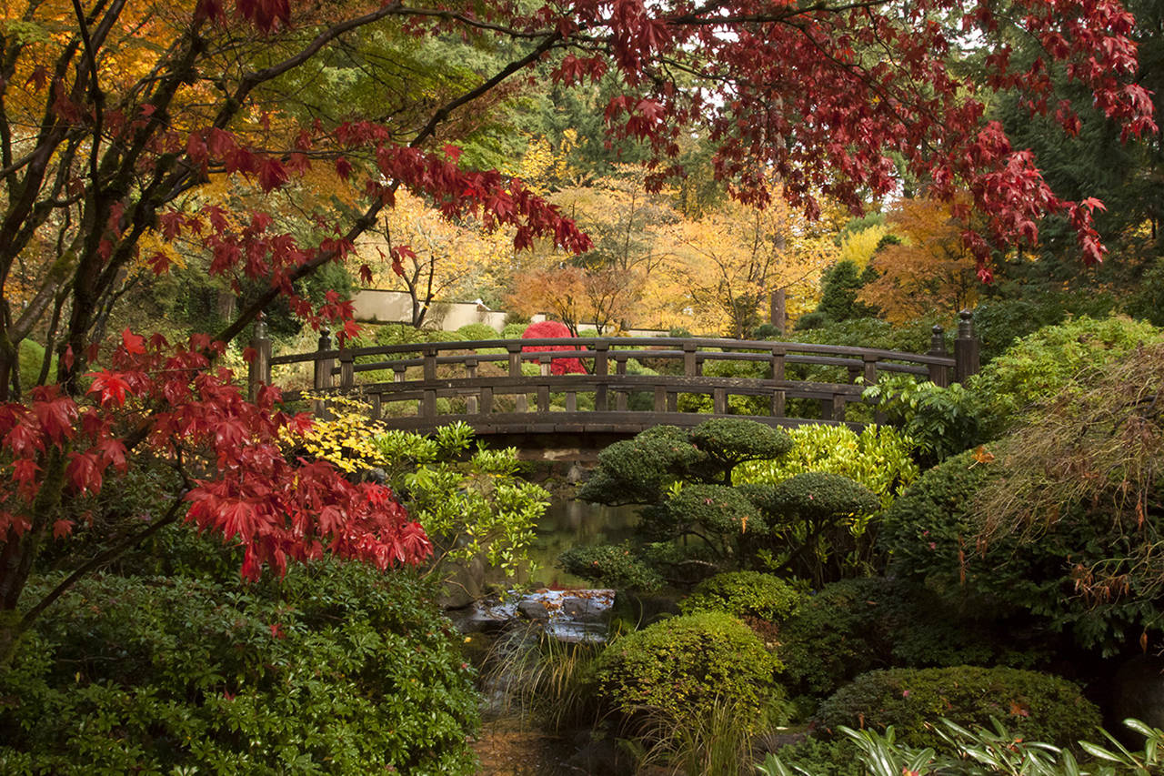 Gem Of The Pacific Northwest: The Portland Japanese Garden